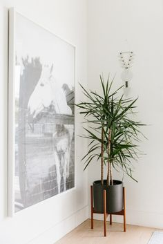Tour the home of 100 Layer Cake's Kristina Meltzer in Marina Del Rey, California. /