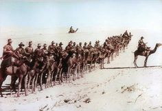 28 September 1915 - Battle of Es Sinn - Part of the Mesopotamian Campaign - Middle Eastern theatre of World War - Australian Diggers of the Imperial Camel Corps