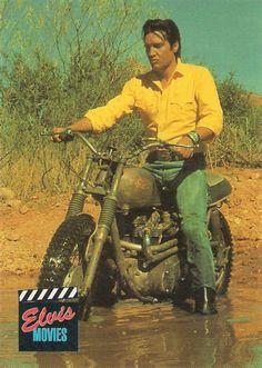 Elvis Presley om his Triumph dirt bike Cool Motorcycles, Triumph Motorcycles, Vintage Motorcycles, Bonneville Motorcycle, Triumph Bonneville, Joe Movie, Cafe Racing, Serge Gainsbourg, Elvis Presley Photos