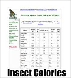 A Fun chart of how many calories and nutrition in insects.