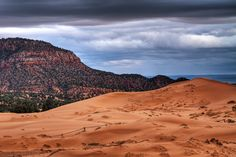 Coral Pink Sand Dunes #2