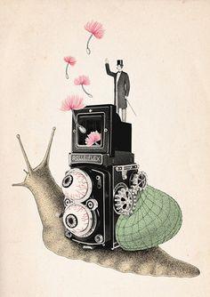 Beibei Nie - animals in art  http://www.pinterest.com/daliabarja/animals-in-art/