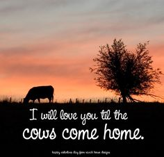 """livestock valentine from ranch house designs! cow valentine""""I will love you till the cows come home"""""""