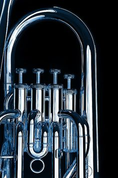 Silver Bass Tuba Euphonium On Black Poster By M K Miller