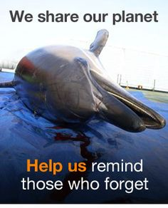 WE SHARE OUR PLANET. HELP US REMIND THOSE WHO FORGET +++++++++++++++++
