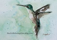 Hummingbird PRINT SET (from Original Watercolor Humming Bird Painting) Two 5 x 7 in aqua turquoise teal seafoam blue brown emerald green
