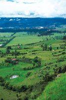Haciendas del altiplano dedicadas a la ganadería.