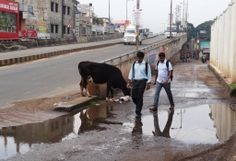 """#Bangalore #JPPark """"Just one rain has brought this approach road leading to Dr. Shyamaprasad Mukherjee Fly over from Divya MSR Gateway and Shriram Sadhana to this stage. With torrential down pour this entire stretch will be a mini pool for couple of weeks."""" Aravinda Baliga. Click on the link to VOTE UP Aravinda's complaint to get the issue resolved faster: http://bit.ly/SWIkWJ"""