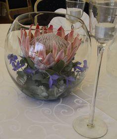 King Protea Bowl
