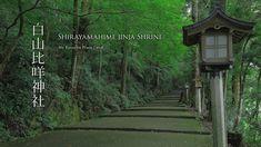 白山比咩神社 4K - Shirayama Hime Jinja Shrine -