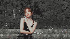 Seulgi Photoshoot, Jimin Seulgi, Overlays Tumblr, Red Velvet Seulgi, Aesthetic Gif, Asia Girl, Cute Gif, Vogue Korea, Anime