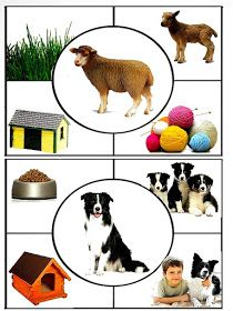 Video of farm animals photos with the sounds they make Preschool Learning Activities, Animal Activities, Toddler Activities, Preschool Activities, Kids Learning, Animals And Their Homes, Farm Animals Preschool, Montessori Toddler, Montessori Materials