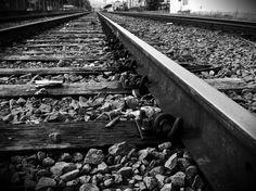 Olhares.com Fotografia | �Sidney Ganho | Trilhos e trilhas 2