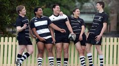 newington college rugby - Google Search