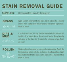 stain removal guide | Mrs. Meyer's Clean Day