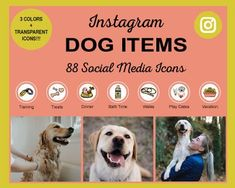 Dog-Items-Iconsjpg Instagram Grid, Instagram Tips, Instagram Story Template, Instagram Story Ideas, Social Media Icons, Social Media Graphics, Icon Photography, Food Dog, Real Estate Icons
