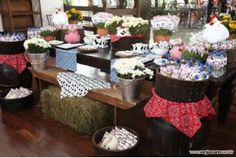 What a fantastic setup! A bail of hay and lots of mums really set the stage for a great farm party!