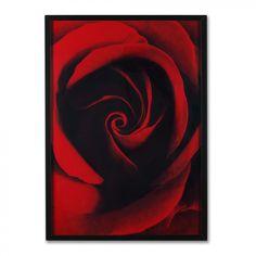 """Graham & Brown Framed Red Rose Framed Print Art - 28"""" X 20"""" - 43739"""