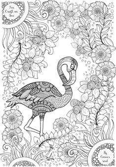 Flamingo colouring page