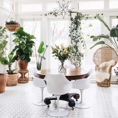 An indoor plant centrepiece, such as this, is an investment worth taking the plunge on.  Image credit: Instagram