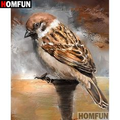 Cheap Diamond Painting Cross Stitch, Buy Quality Home & Garden Directly from China Suppliers:HOMFUN Full Square/Round Drill DIY Diamond Painting Birds Painting, Diamond Painting, Sparrow Art, Wildlife Art, Painting, Bird Artwork, Cross Paintings, Bird Pictures, Bird Art