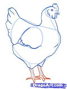 How to draw a chicken - step by step