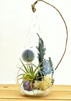 Small Air Plant Terrarium Kit with Purple Amethyst Crystal / Shabby Country Chic / Teardrop Glass Kit Only ** Click image to review more details.