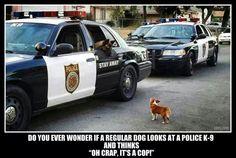 It's a cop