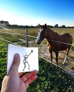 Good Morning ! # #elyxyak #nature #horse #goodmorning