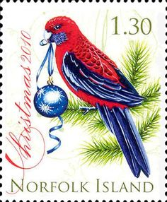 Norfolk Island  Christmas parrot 2010