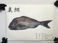 デジタル魚拓サービス 魚墨で作成した真鯛のカラー魚拓です。  It is a color fish print of a red sea bream. www.uosumi.net/