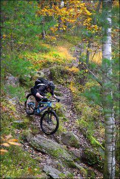 One of the technical descents on Black Beast  #mtb Trail, Gothenburg, Sweden. Photo: Natasja Jovic Rider: Leo Ranta