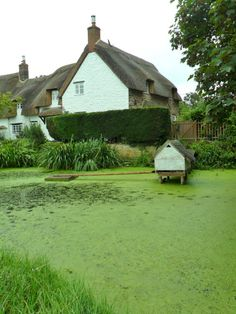 vwcampervan-aldridge:  Thatched Cottage with duckpond and...