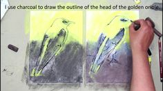 Yellow and black in pastel - drawing of golden orioles.