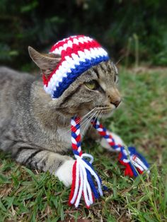 July 4th Cat Dog Hat - The American Pride Beanie for Cats and Dogs - Fourth of July Cat Dog Costume on Etsy, $13.00