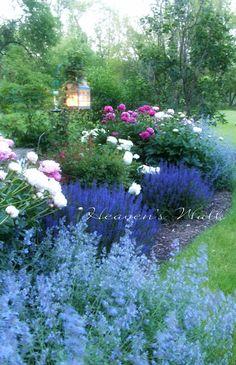 A fairytale garden
