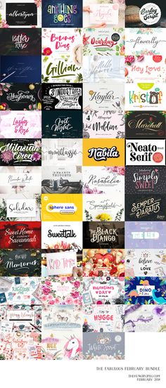 108 different fonts from 39 premium font families and over 1400 graphics elements, compositions, patterns, lettering art, watercolor kit and more from 13 graphics packs, all for the price of one! Get this amazing collection for ONLY