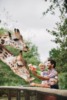 Gulf Breeze Zoo | Map & Driving Directions