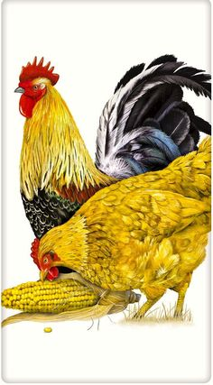 Rooster and Hen Cotton Flour Sack Dish Towel Tea Towel Más Rooster Art, Rooster Decor, Hen Chicken, Chicken Art, Farm Animals, Animals And Pets, Chicken Painting, Chickens And Roosters, Hens And Chicks