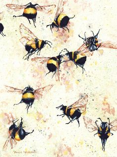 Watercolor print, Fermented, by Maggie Vandewalle, x matted to fit an x frame The Artist, Bees And Wasps, Taken 2, Bee Art, Free Graphics, Bees Knees, Artist Painting, Bee Painting, Watercolor Print