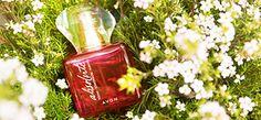 Treat yourself to the indulgent scent of Avon Today Tomorrow Always Absolute Parfum. #AvonRep #avon #fragrance #perfume