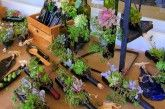 Succulent Bottles Will Add Charm To Your Home