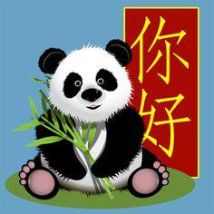 Panda Coach