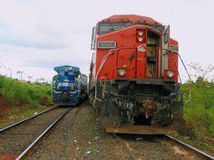 Cruzamento de trens em CORDEIRÓPOLIS/SP