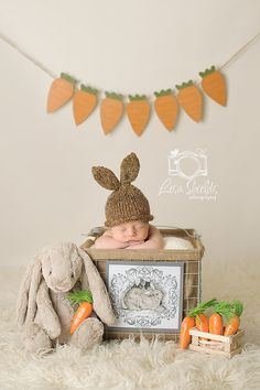 Knit Baby / Newborn Bunny Rabbit Hat, Hand Knitted Easter Infant Photo Prop, Chocolate Brown, Sizes NB- Adult