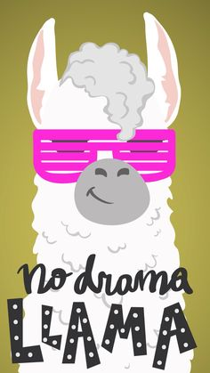 No drama llama wallpaper Girly Wallpaper, Tumblr Wallpaper, Animal Wallpaper, Beautiful Wallpaper, Tumblr Backgrounds, Wallpaper Backgrounds, Iphone Wallpaper, Positive Backgrounds, Funny Llama
