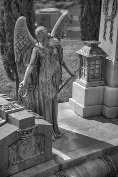 Winged Cemetery angel looking like Isis. Cemetery Angels, Cemetery Statues, Cemetery Headstones, Old Cemeteries, Cemetery Art, Angel Statues, Graveyards, Angel Sculpture, Angel Drawing