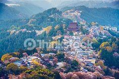 Thinkstockで京都のストックフォトを検索