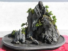 Unknown attribution(page in Vietnamese) Hòn Non Bộ (Vietnamese miniature landscape) vivarium/terrarium inspiration