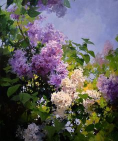 Lilac Painting, Hydrangea Painting, Oil Painting Flowers, Diy Painting, Watercolor Portraits, Watercolor Paintings, Android Art, Seascape Paintings, Flower Art